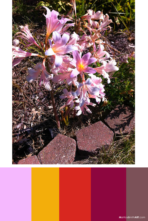 Belladonna Lilies; Color palette inspiration from Martice's nature walk