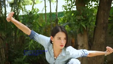 Wushu Ranger Movie Review Starring Janice hung