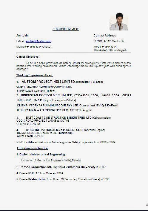 cv form pdf free download