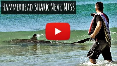Watch this Hammerhead Shark attack nearly miss the two swimmers enjoying in the waters near Destin via geniushowto.blogspot.com Shark attack videos