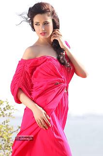 Yuvika-Chaudhary
