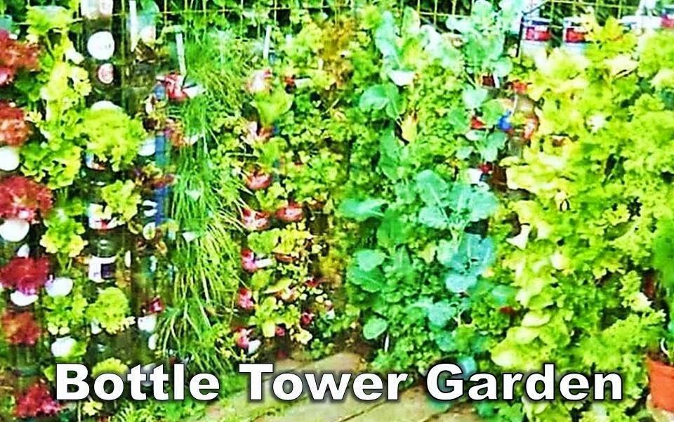 DIY GARDEN TIPS:  Making Veggie beds and Bottle Towers Gardens