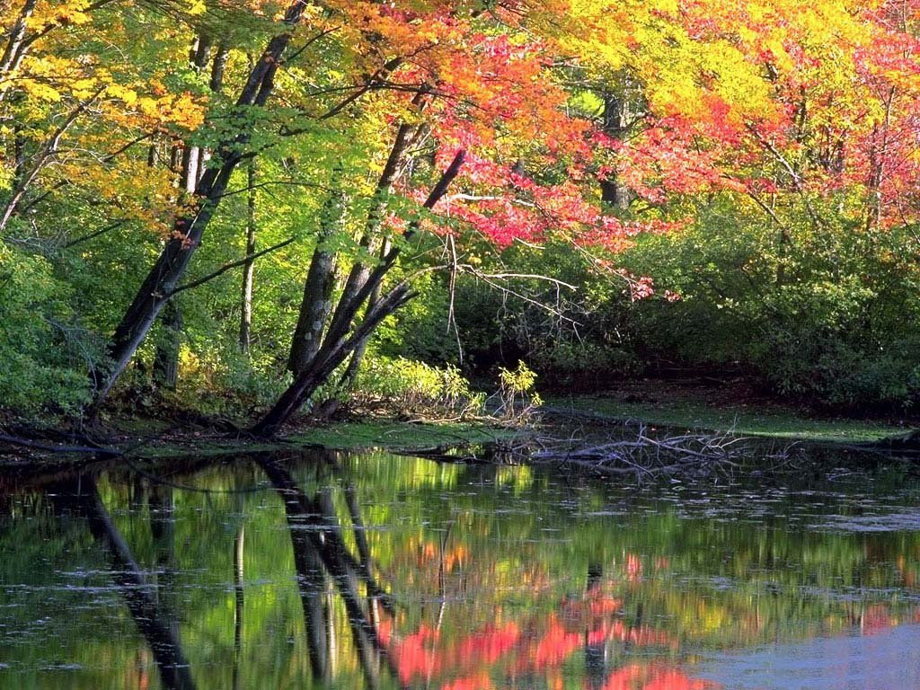 autumn wallpapers hd free autumn wallpapers hd