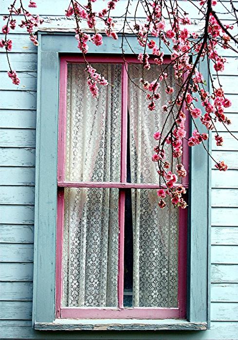 Casa - Decoração - Reciclados: ♪ Abra a Porta e a janela... e Vem ...