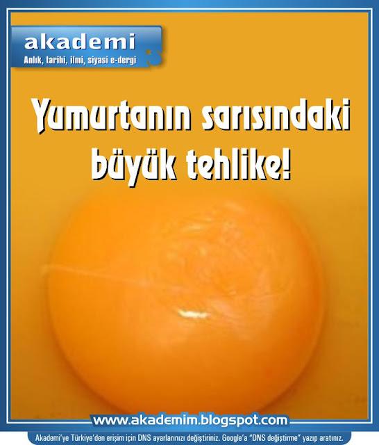 Yumurtanın sarısındaki büyük tehlike!