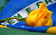 Guia da reforma política para um Brasil melhor. (bandeira do brasil )