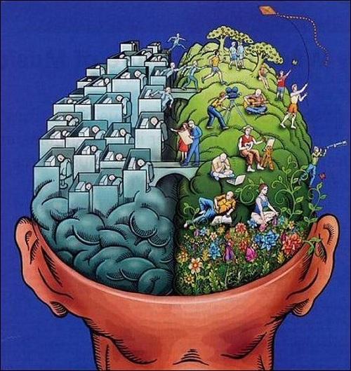 Cerebro. HUMOR GRAFICO en CUIDADO con los HUEVOS