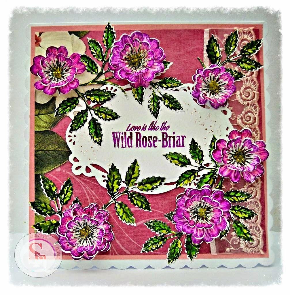 dream laine wild rose briar stamp and die. Black Bedroom Furniture Sets. Home Design Ideas