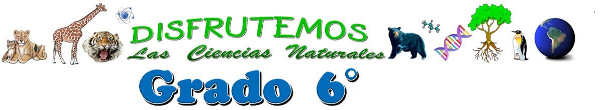 GRADO 6.1 y 6-7 MAURIS SARRIA