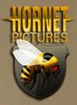 Hornet Pictures Blog