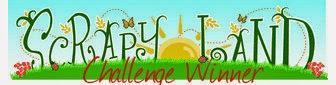 Winner Challenge #43