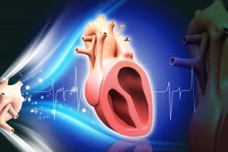 tips+menjaga+jantung+selalu+sehat.jpg