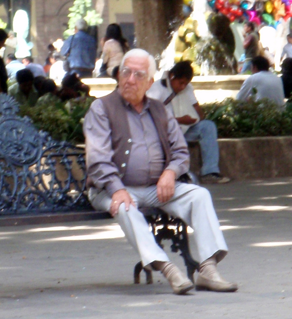 papacitos en la plaza