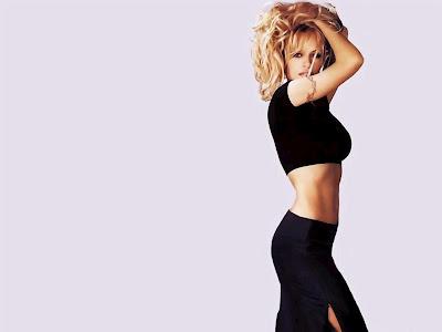 Pamela Anderson Hd Wallpapers 2013