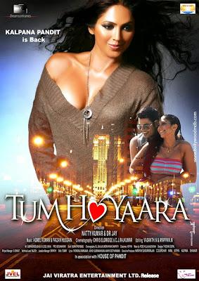 Free Download Tum Ho Yaara 2014 Hindi HD 720p