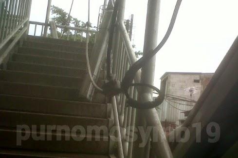 Kabel Di Biarkan Terurai Di Jembatan Penyeberangan Pedati
