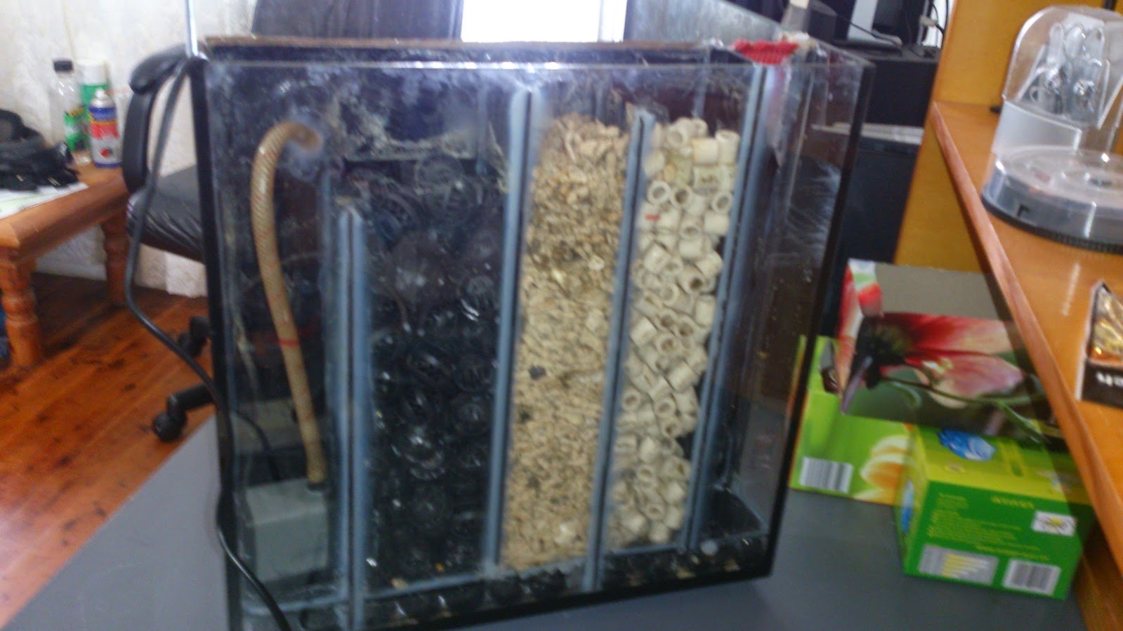 Setting up your first saltwater tank fishing kims for Diy biological filter media