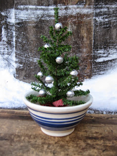 Silver Bell Tree in Little Mixing Bowl