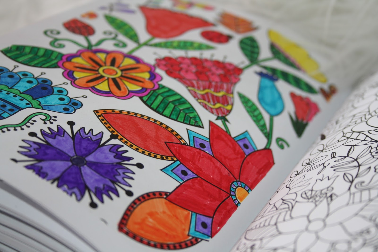 The Creative Colouring Book For Grown Ups