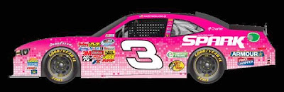 Austin Dillon's breast cancer awareness car