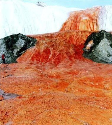 شلالات الــدم في القارة القطبية bloodfalls01.JPG