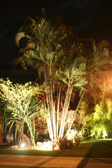 iluminacao led jardins:Orquidário OrquivivA: Iluminação nos jardins
