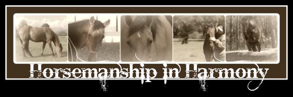 Horsemanship in Harmony