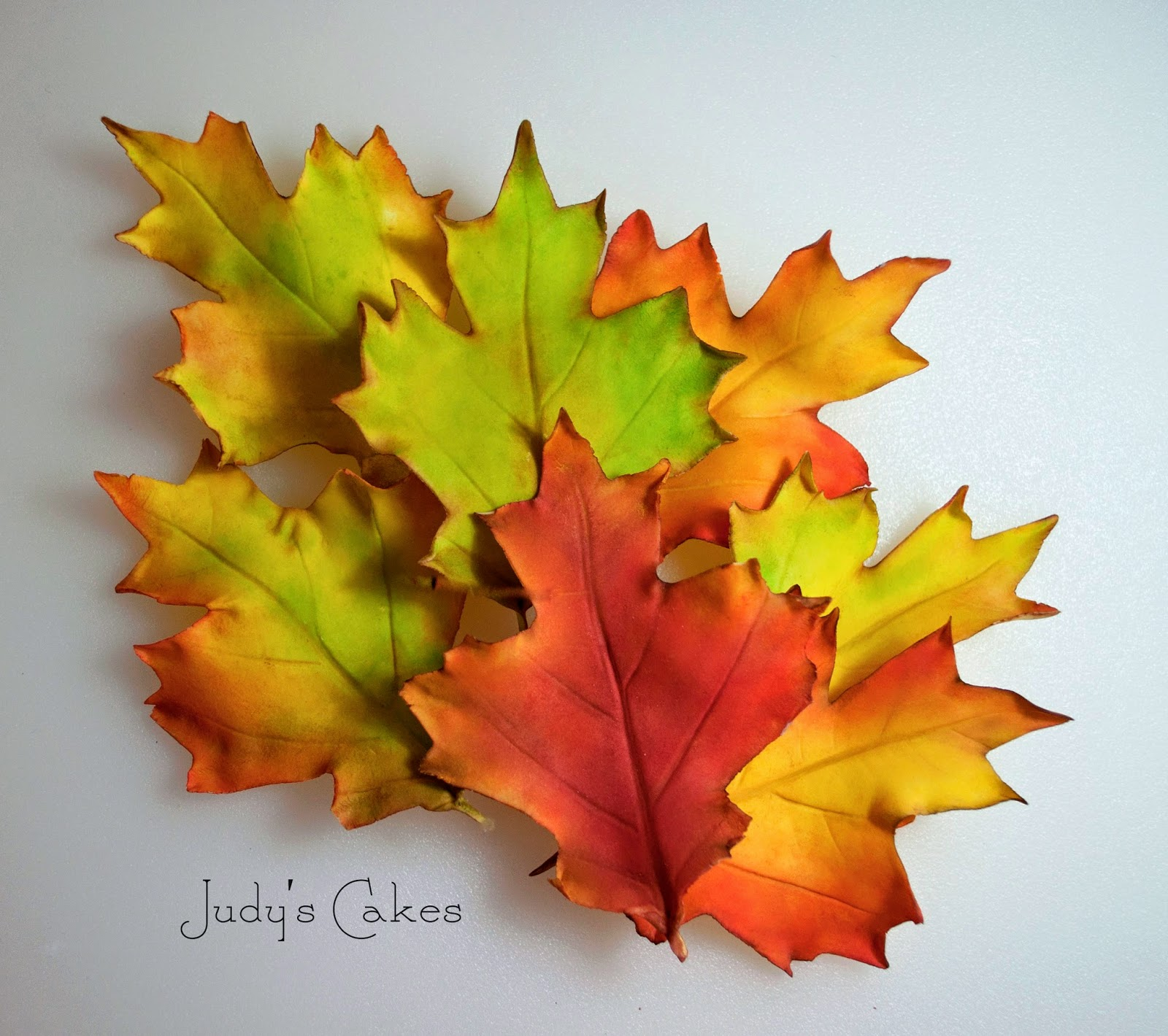 Cake Decorating How To Make A Leaf : Judy s Cakes: How to Make Fall Leaves - Part #2