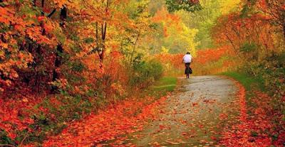 Perfumes en el otoño
