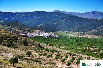 Vistas de Ferreira desde el asentamiento íbero de el cardal, en Ferreira, Marquesado del Zenete, visita Camping La Lomilla con Senedtur