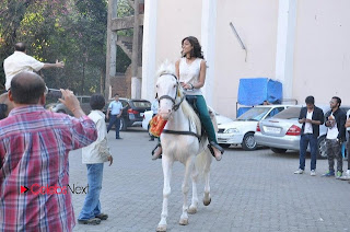 Ileana D'Cruz Stills on a White Horse at Phata Poster Nikla Hero Shooting Spot ~ Celebs Next