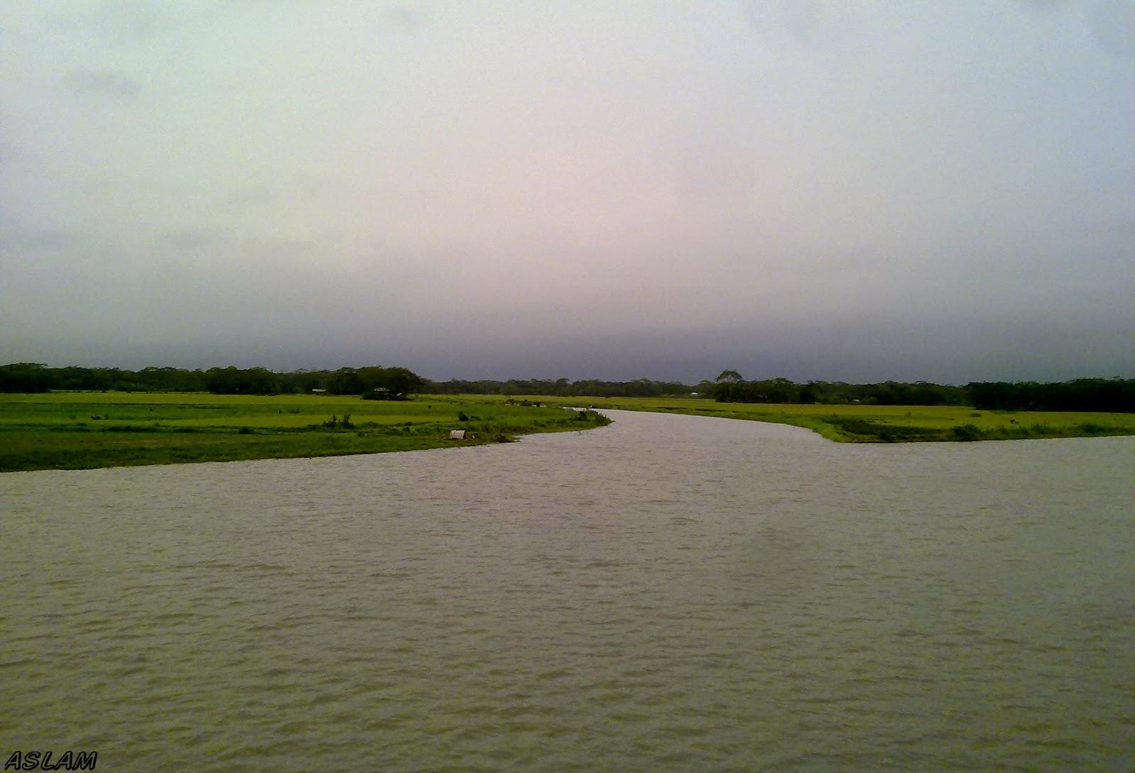 Beautiful river bank