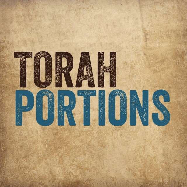New!  Torah Thoughts - Daily Torah Portion Devotional