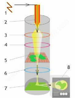 TRANSMISION ELECTRON MICROSCOPES