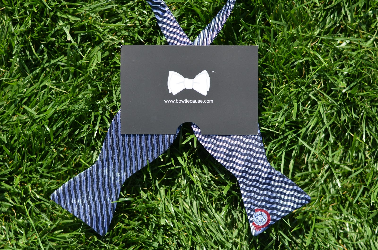 We Love Cincinnati And There Is No Better Time To Live Here Than Right Now  To Dhani Jones Bow Tie