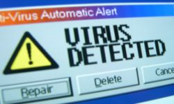 вирусы в сети