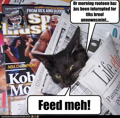 LOLCat should be fed.