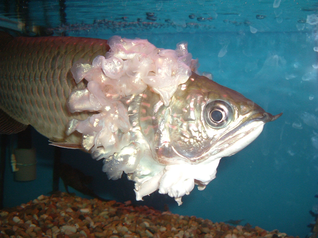what is the best way to store vintage clothing