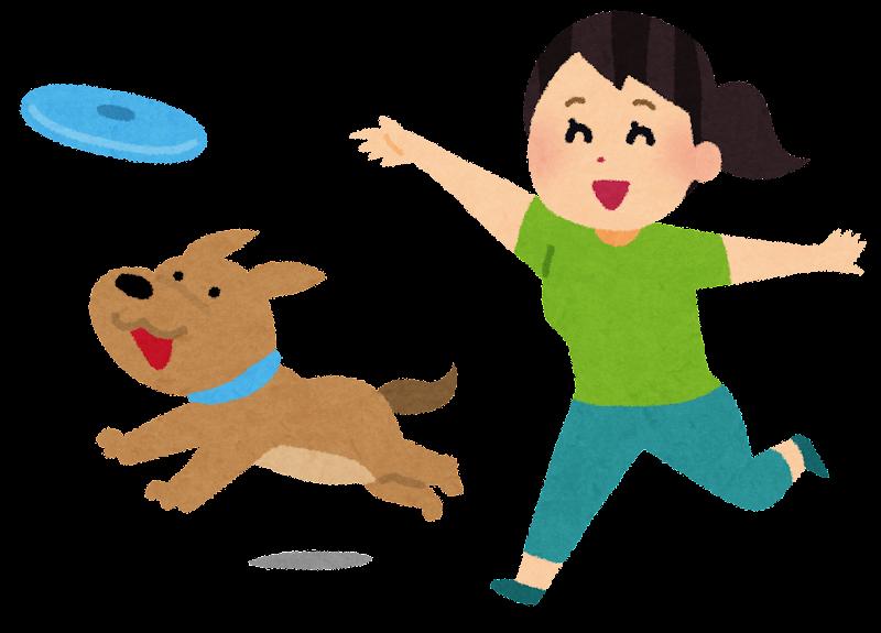 犬とフリスビーで遊ぶ人の ... : 写真 年賀状 テンプレート 2015 : 年賀状