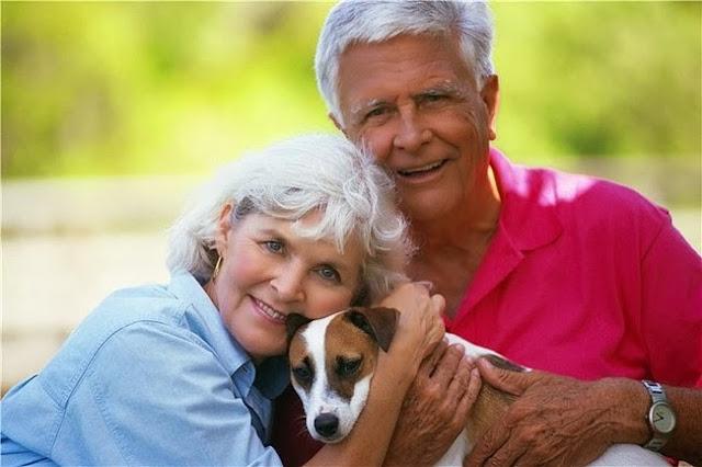 пожилая пара и собака