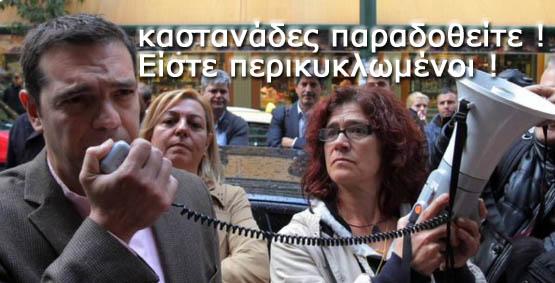 Οι καλύτερες ατάκες για τη σύλληψη του καστανά στη Θεσσαλονίκη