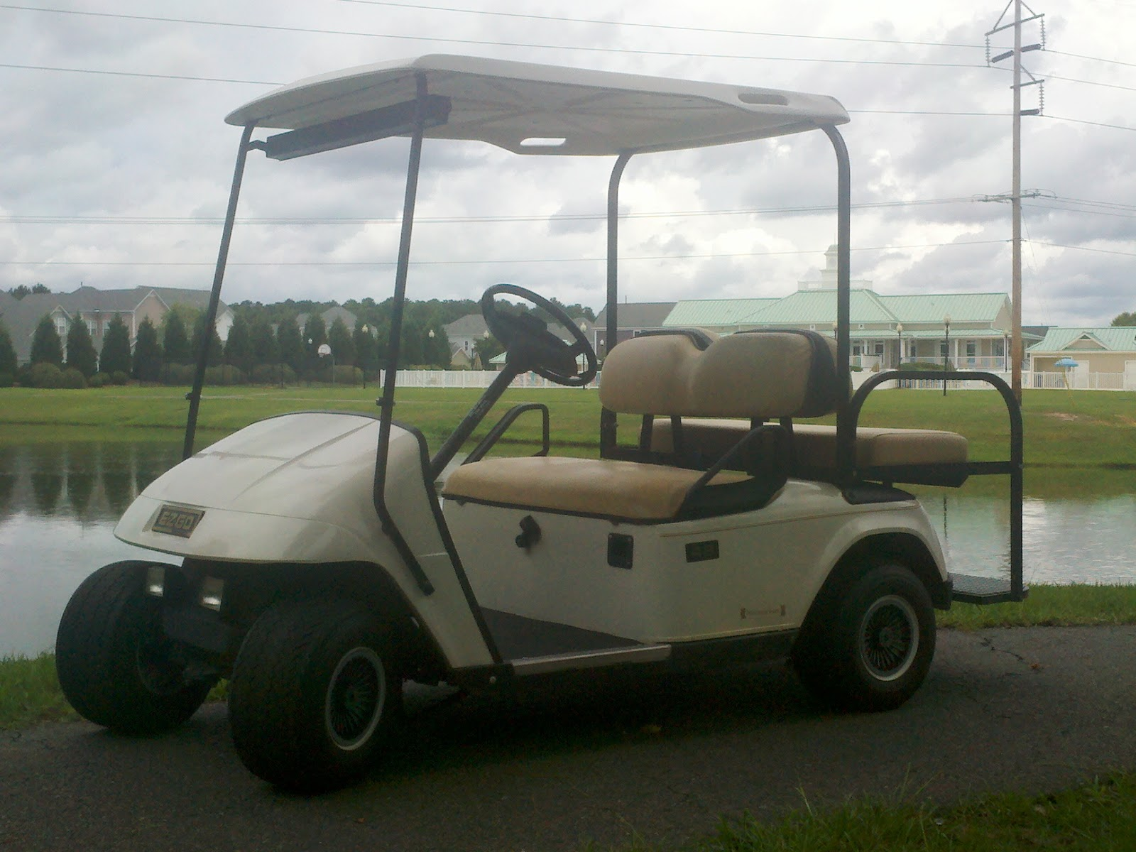 Electric Golf Carts Which Is