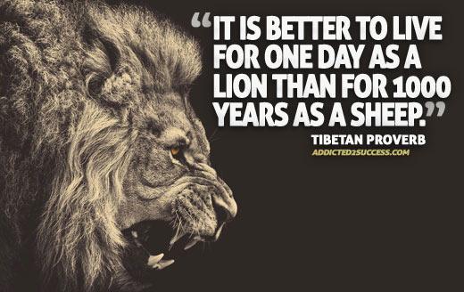 Be a leader, not a follower!