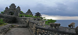 the Monkey at Uluwatu Temple