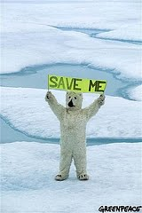 Save polar bear