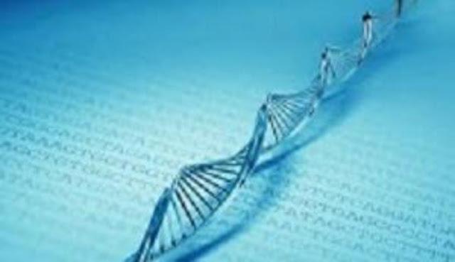 Ilmuan Berhasil Ungkap Gen Adam dan Hawa
