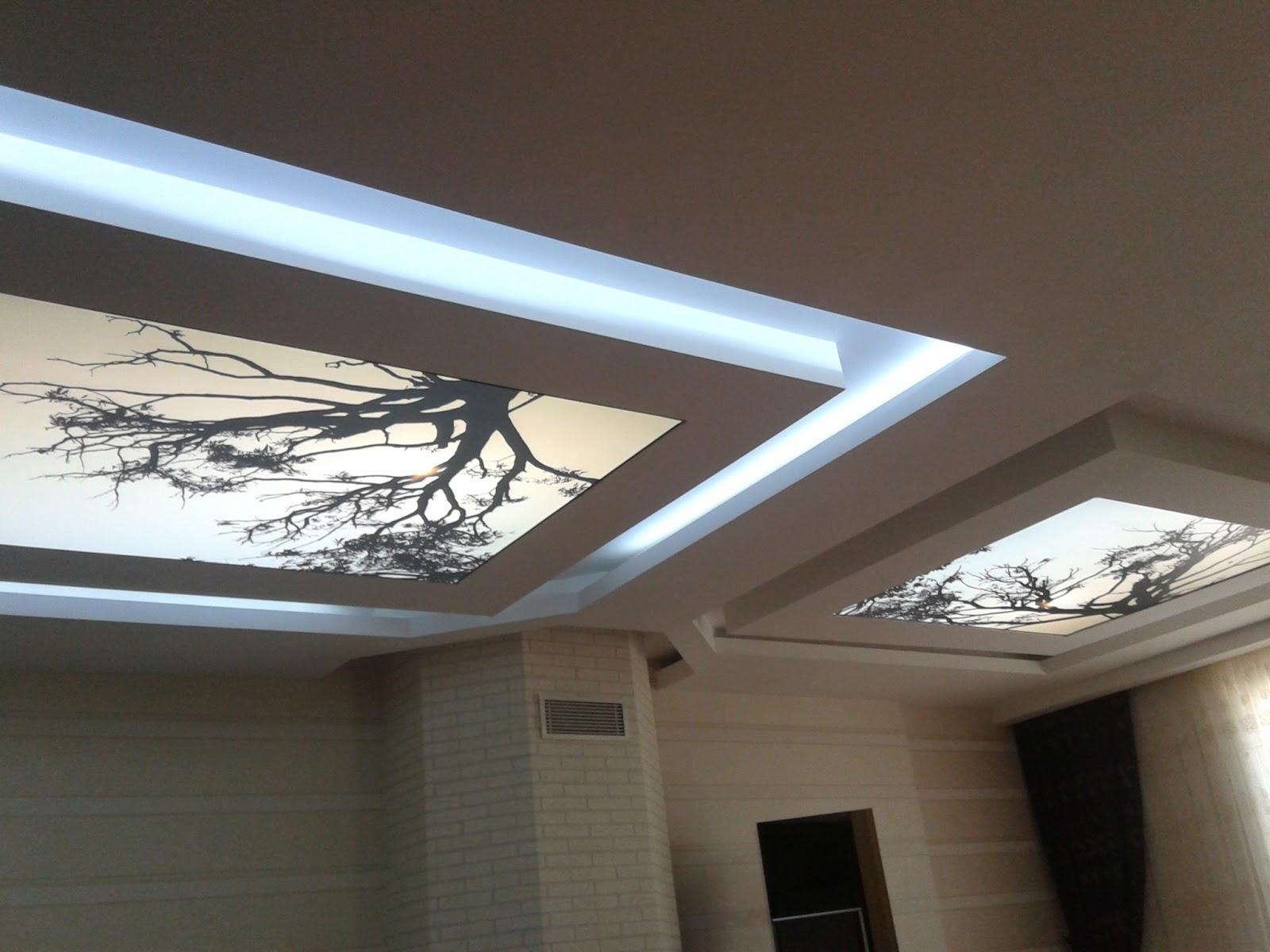 Asma tavan modern resimli isikli ev dekorasyon fikirleri - Germe Tavan Fiyatlar