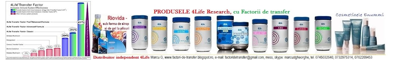 FACTORII-de-TRANSFER