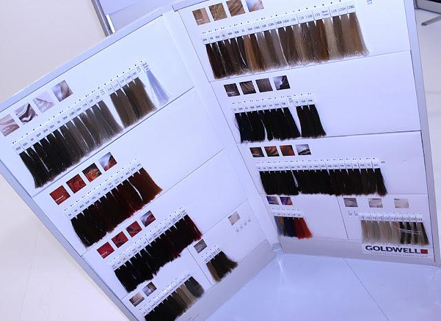 Goldwell Color Chart Diigo Groups