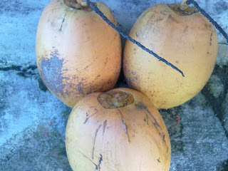 http://aku-saya-alam.blogspot.com